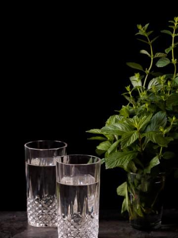 Da li postoji nešto više osvježavajuće, tokom vrućih ljetnih dana, od pića od mente? Ovaj sirup će promijeniti način na koji pravite sok, mojito i više od toga. Menta, voda, šećer i limuntoz je sve što vam treba za ovaj nebeski napitak.