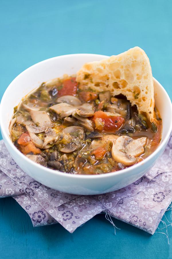 Mushroom Soup Herzegovina (Supa od Gljiva)main03