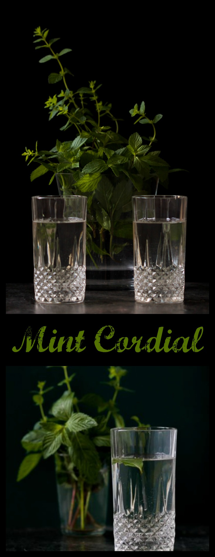 Is there anything more revitalizing on a hot day than a mint drink (in our case mint cordial)? This syrup will change the way you make your juice, mojito, and more. Mint, water, sugar and citric acid are all you need for this sip from heaven.