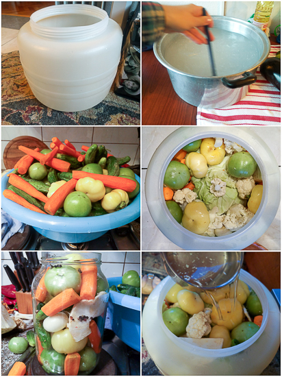 An easy guide to fermenting vegetables for salads and meals. Includes: yellow bell pepper tomatoes, green tomatoes, cabbage, carrots, cucumbers, celery root, peppercorn.