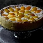 apricot cheesecake, cheesecake, apricots | balkanlunchbox.com